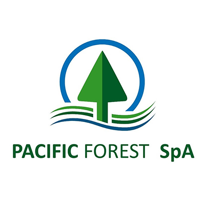 pacific forest